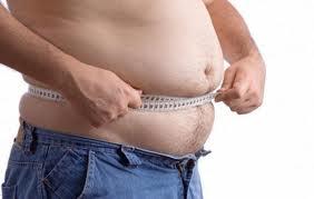 gordo barrigudo